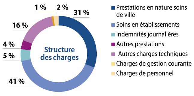 Graphique : principaux postes de dépenses de l'Assurance Maladie (cf. description détaillée ci-après)