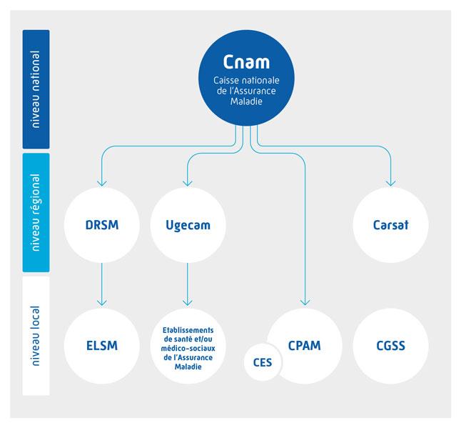 Schéma : réseaux de la Cnam (cf. description détaillée ci-après)